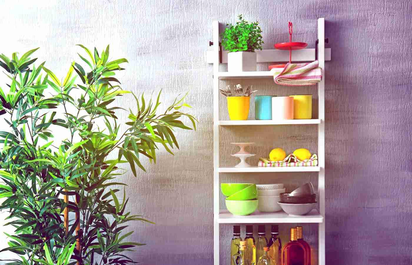Best Kitchen Shelves Lifestyle Reviews
