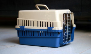 Pet carrier