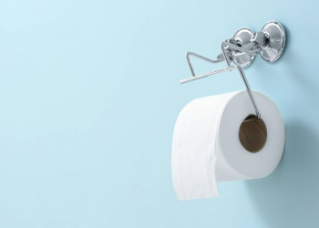 Where to Mount a Toilet Paper Holder Featured Image