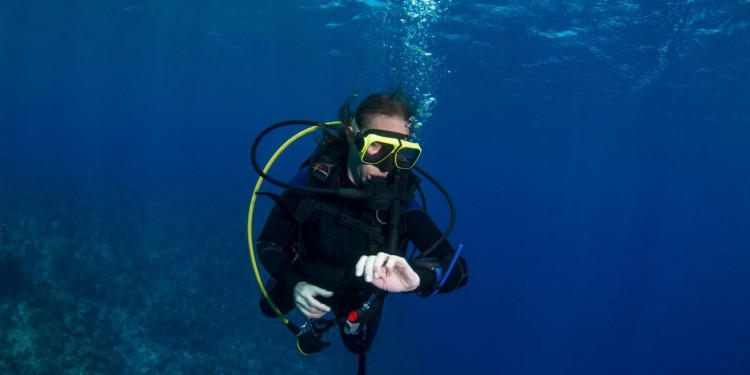 Why You Need a Safety Stop While Diving Featured Image